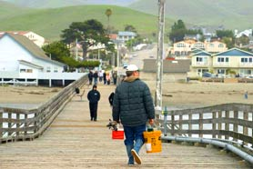 cayucos pier fishing
